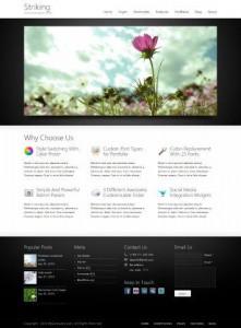 網頁內容管理系統模板