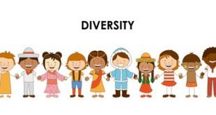 SEO 多樣性