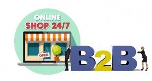 B2B 網上商店平台